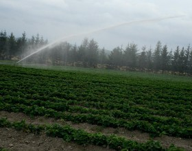 Canons d'irrigation