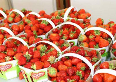 paniers-fraises